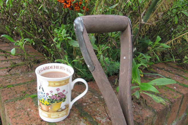 Fresh air and exercise- spade and cup of tea